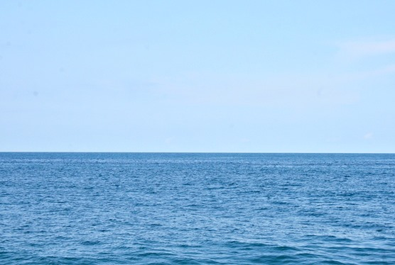 ocean16